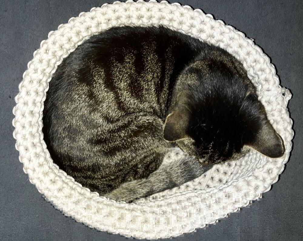 Martinas Katzenkörbchen